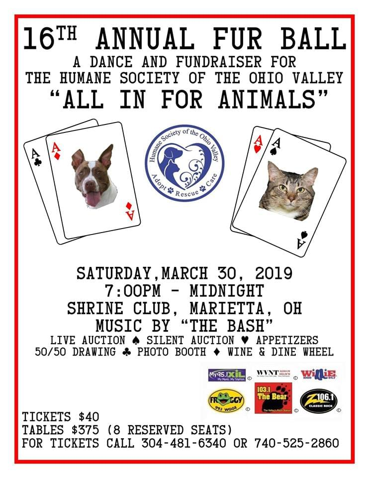 "16th Annual Fur Ball ""All in for Animals"""