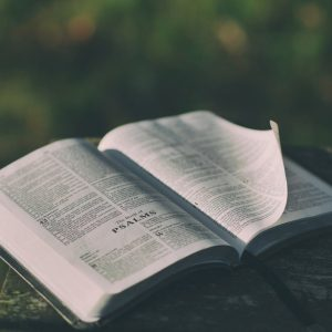 Anderson County High School rejects Bible elective