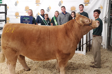Grand Champion Steer Sells for $8,500 at FFA/4-H Beef, Sheep and Swine Auction