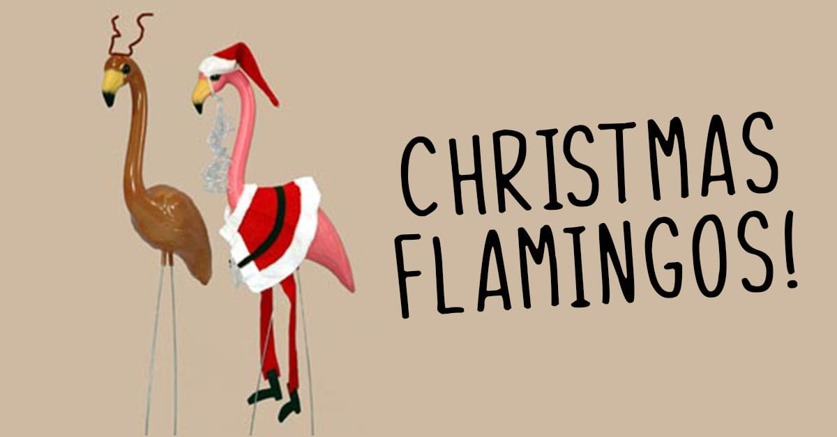 Christmas Flamingos are the New Decoration Trend