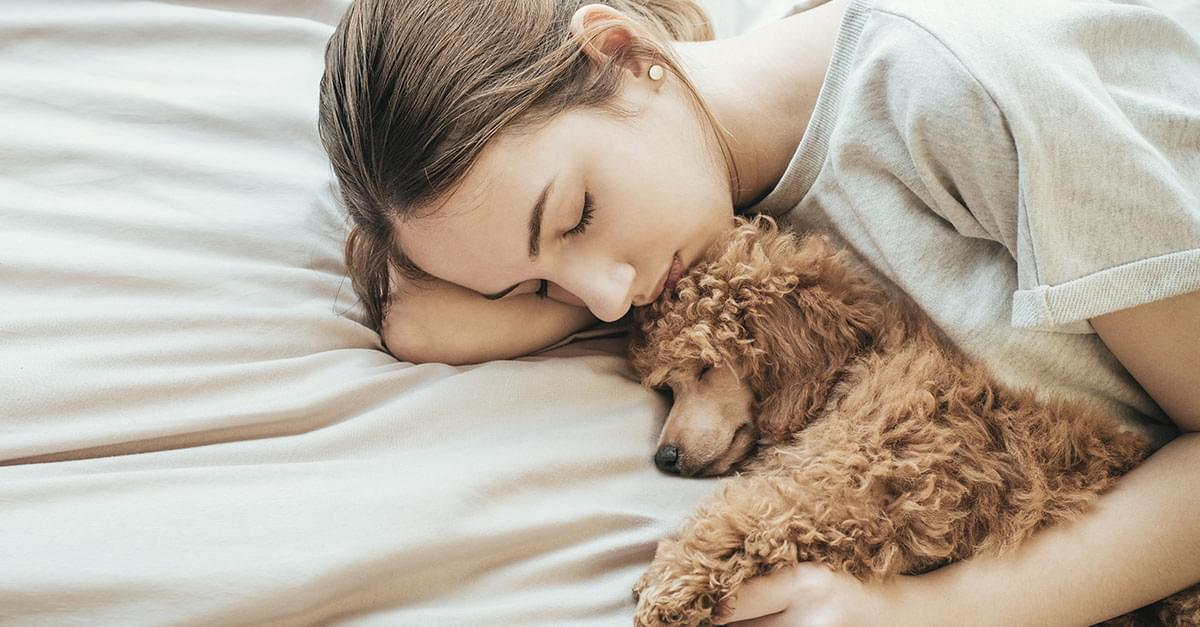 Study Finds Women get Better Sleep with a Dog on the Bed