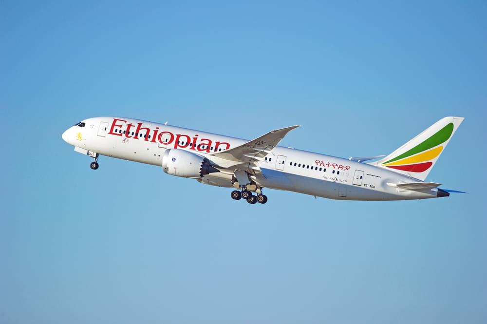 Trump Bans Boeing 737 Max Flights in the US After Ethiopian Airlines Crash