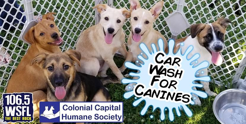 WSFL Presents the Car Wash For Canines