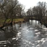No Change in Rock River Levels