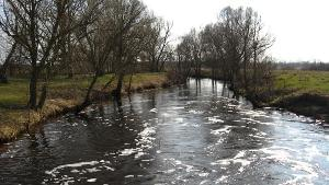 image of flood on the river in the spring