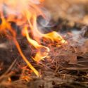 Prescribed Burn To Be Conducted In Fort Atkinson