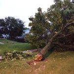 PHOTOS: Fort Atkinson Storm Damage October 1st, 2019