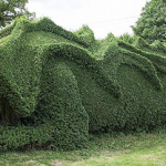 10 Years Spent On A 150-Foot Long Hedge Dragon