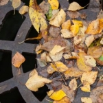 Naplate mayor hopes grant and loan bring end to sewer problems
