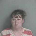 Lake Holiday woman arrested after stabbing