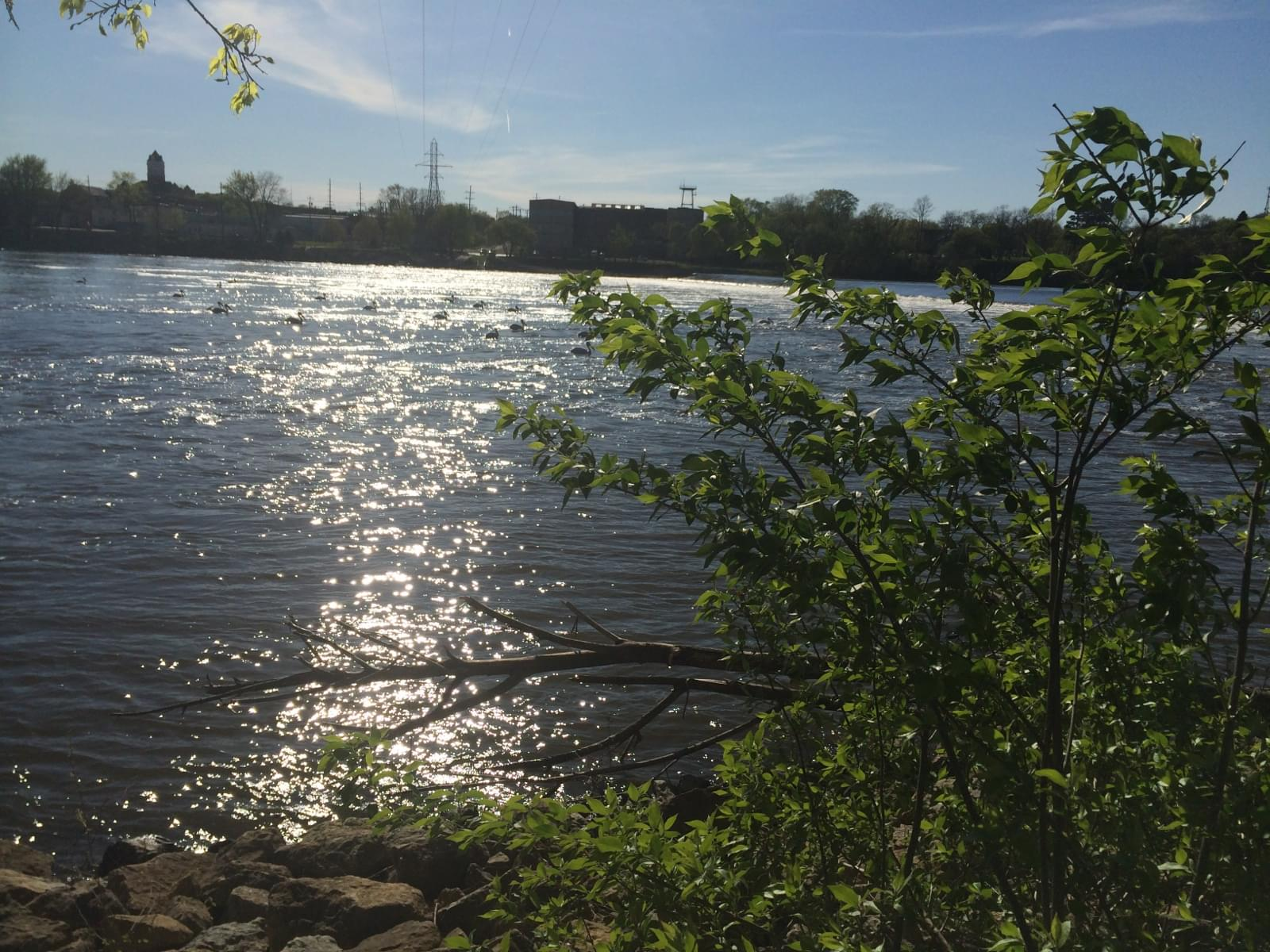 Ogle County Sheriff Implements No Wake on Rock River