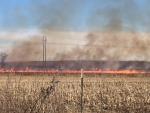 Controlled Burns Healthy for Nachusa Grasslands