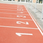 Girls Track and Field- Local State Finals Results