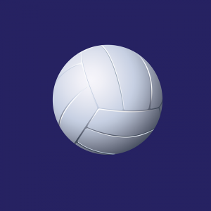 Girls Volleyball- Rock Falls Beats Newman to Win their Own Invite