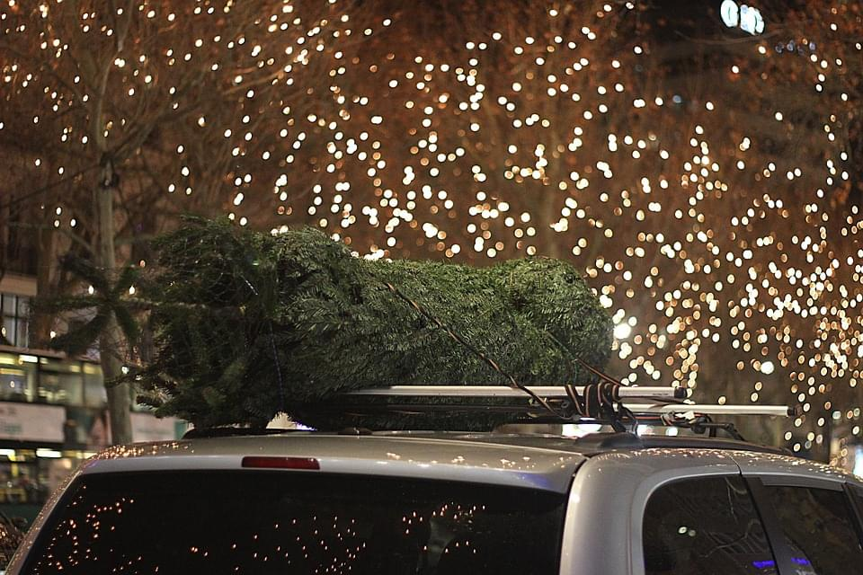 christmas-tree on car