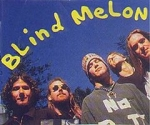 Blind Melon on MTV Unplugged