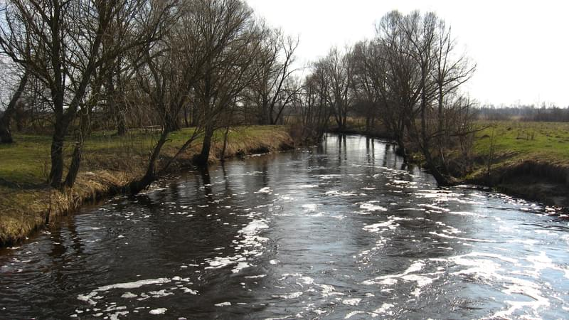 flood on the river in the spring