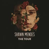 Shawn Mendes Xcel 6 22
