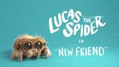 Lucas The Spider Wants a New Friend