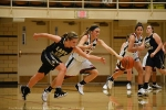 Lady Cats Strong Start Not Enough, Fall To Lady Shoes
