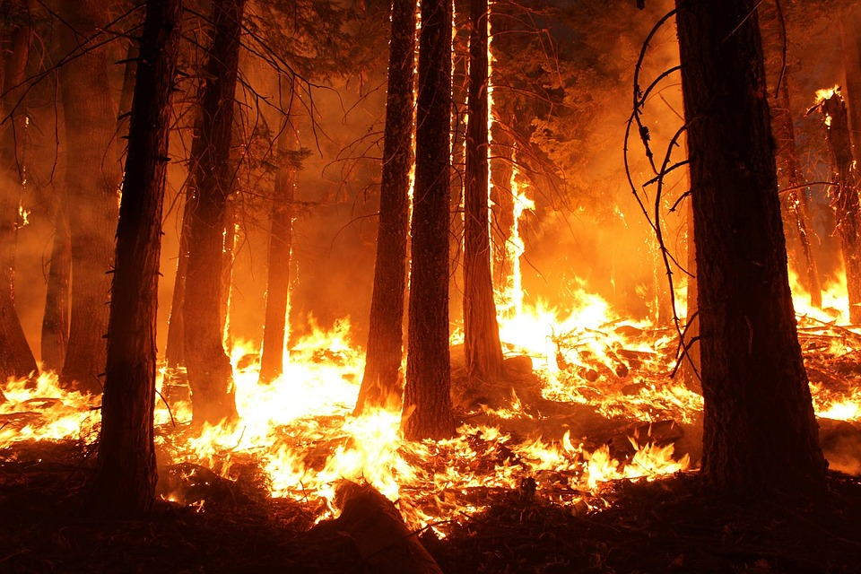 State urges heightened fire awareness