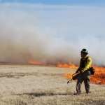 WDFW plans controlled burns in eastern Washington