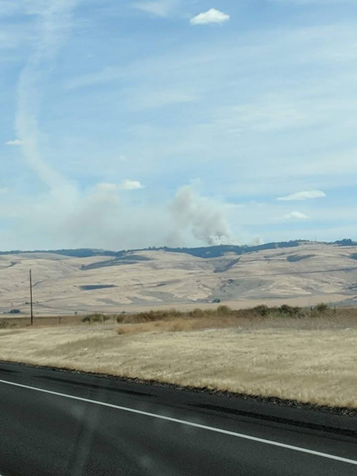 Prescribed burn turns into a wildfire near Pendleton