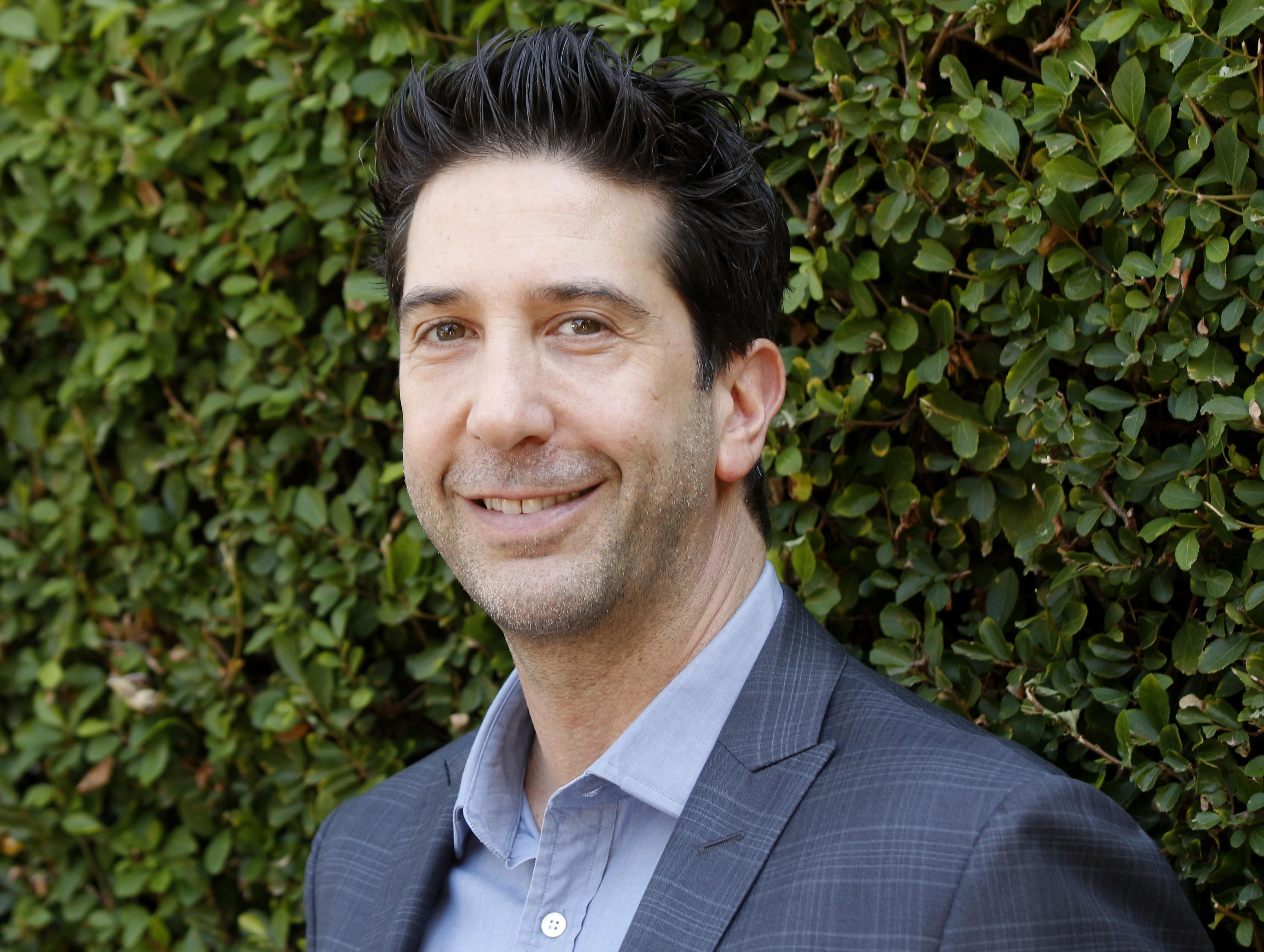 """David Schwimmer making """"friends"""" on Will and Grace"""