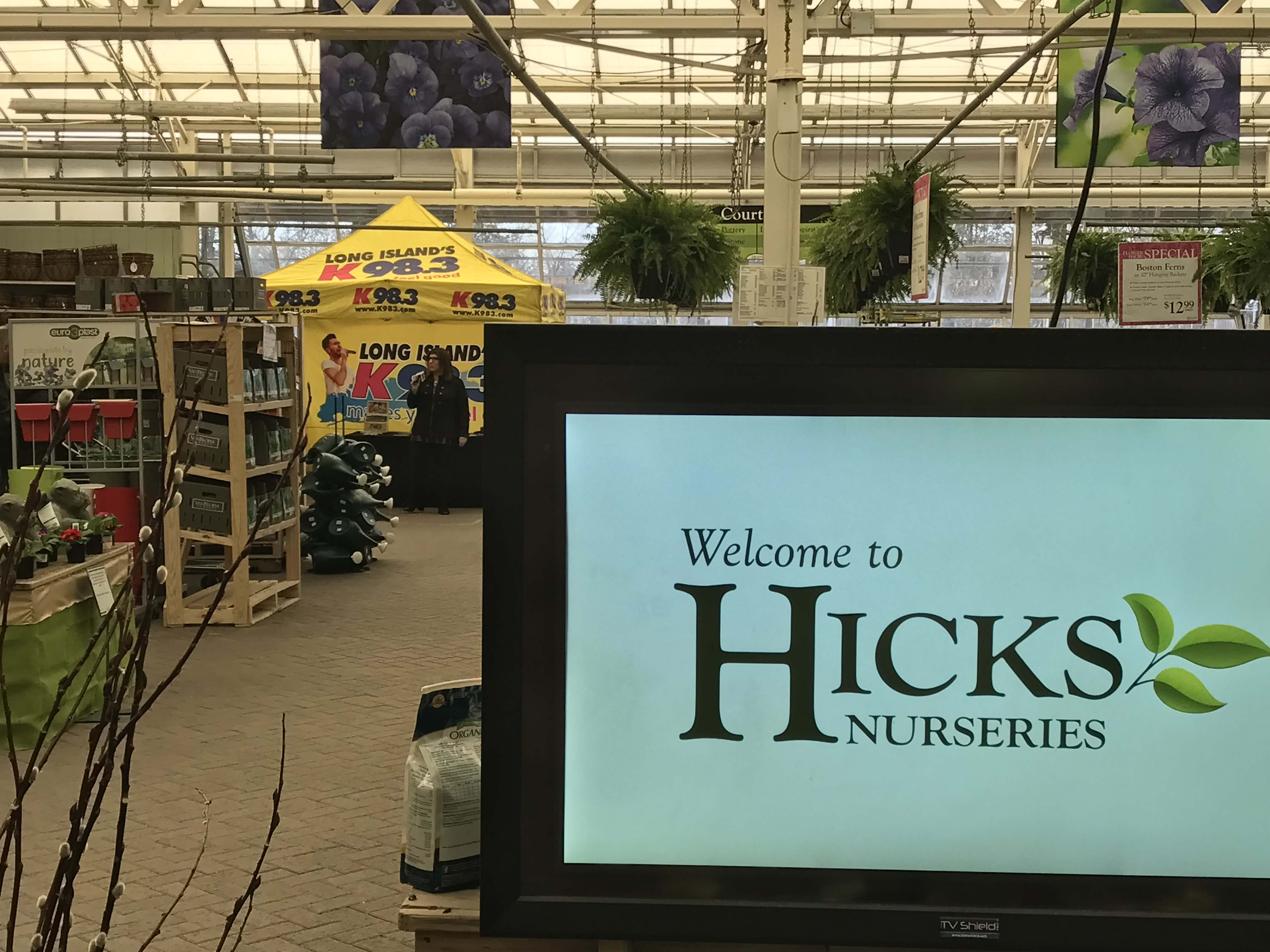 K98.3 @ Hicks Nurseries