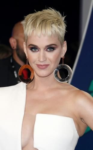 Katy Perry Says She Needs 'Soul Surgery' Before Having Family