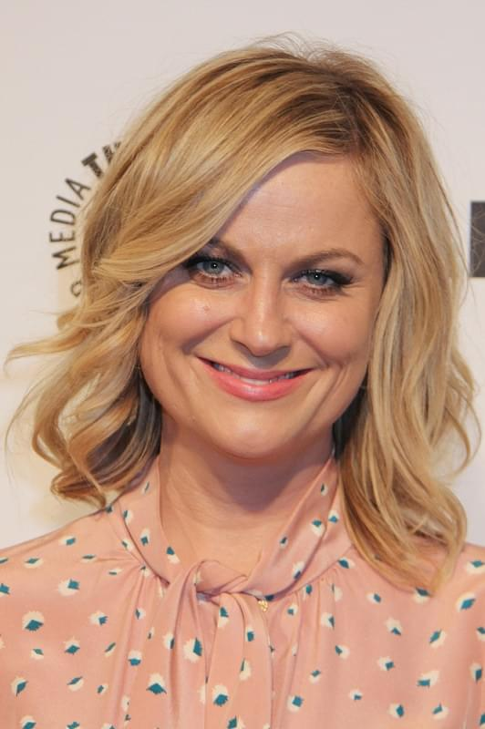 Netflix Taps Amy Poehler to Produce/Direct New Comedy