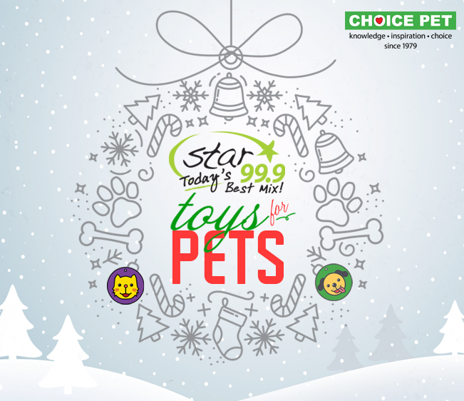 Star 99.9 Choice Pet Toys for Pets