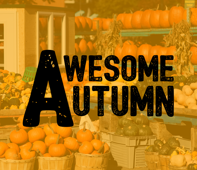 99.1 PLR Awesome Autumn