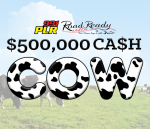 99.1 PLR Road Ready Used Cars $500,000 Cash Cow