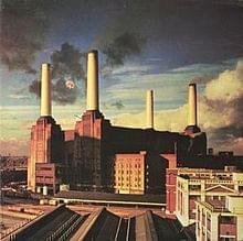 "99.1 PLR Ferraro's Market Mike's Record Review: Pink Floyd's ""Animals"""
