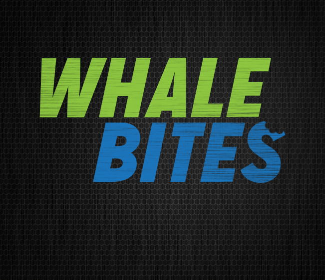 102.9 the Whale Bites