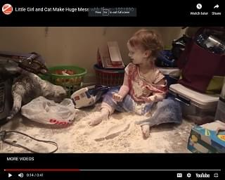 Viral Video of the Day: Little Girl and Cat Make Huge Mess with Flour