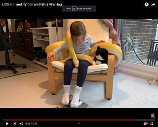 """Viral Video: A Little Girl And Her 14-Foot Long Python """"Pal"""""""