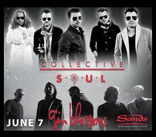 Collective Soul & Gin Blossoms!