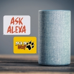 ASK ALEXA WEDNESDAY APRIL 17TH