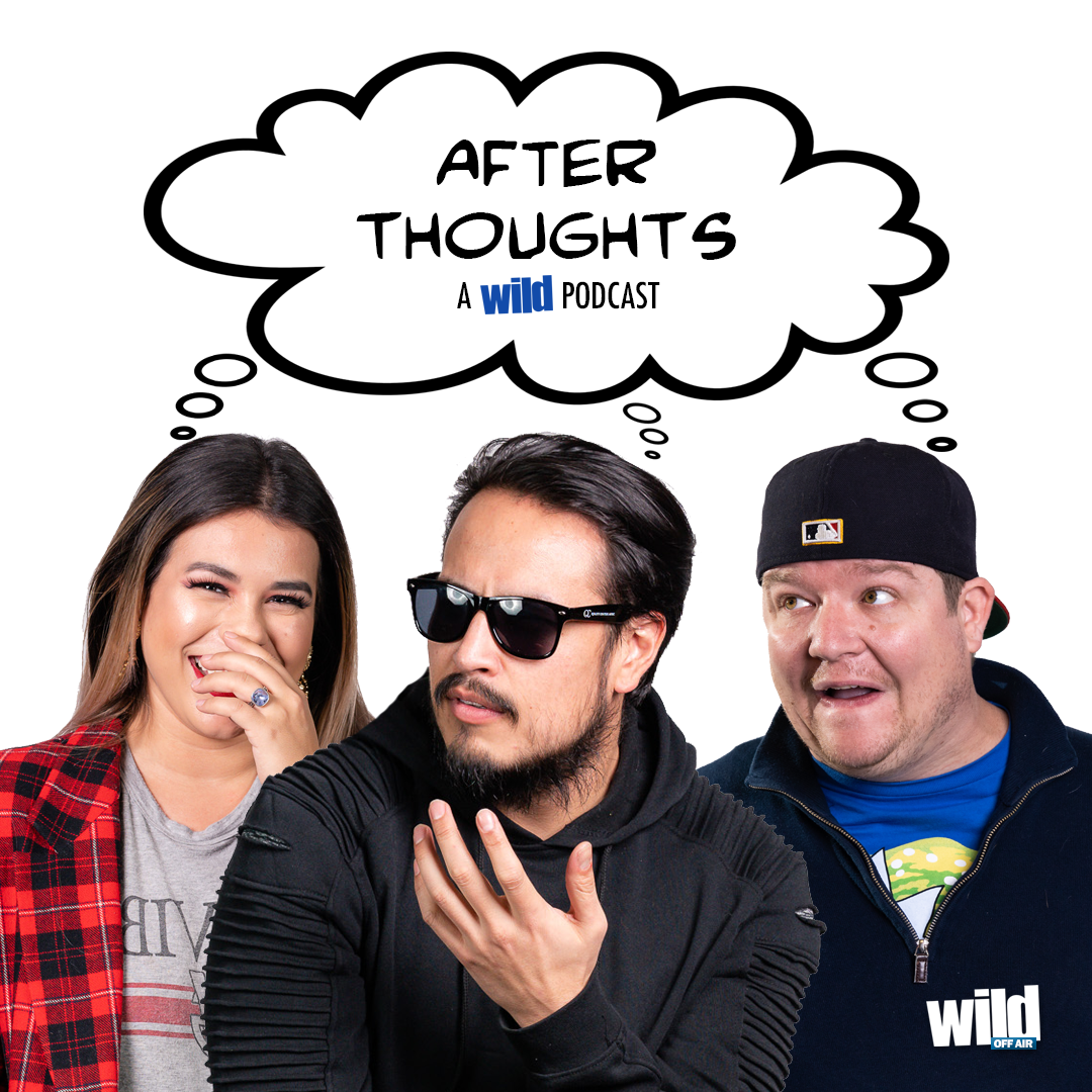 After Thoughts : A WiLD Podcast