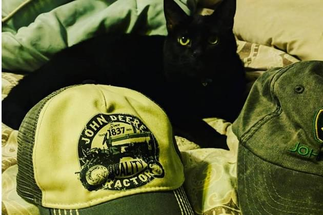 Keith Urban & The Hat Vote