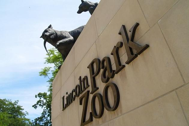 WVEL Travel/Family Scope Now: The Lincoln Park Zoo Will Remain Free Until Mid-Century