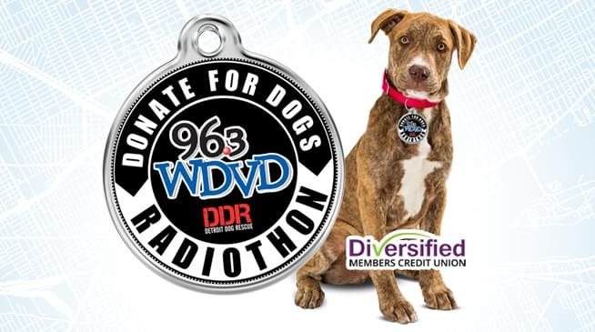 2019 Donate for Dogs Radiothon ~October 4