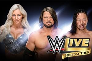 WWE Live Holiday Tour @ Stockton Arena