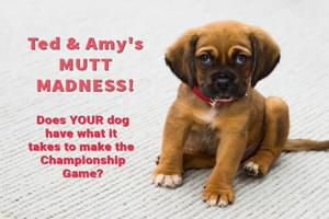 Ted & Amy's MUTT MADNESS!