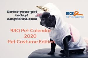 Be a Part of Our 2020 Pet Calendar!