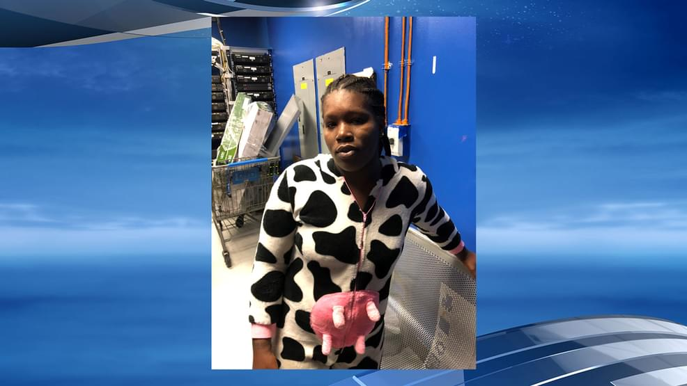 Woman in a Cow Costume Is Busted for Shoplifting