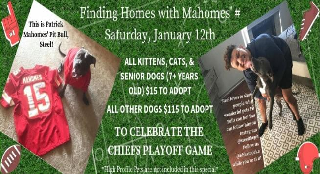 Finding MA(HOMES) Adoption Special