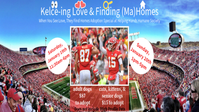 Helping Hands Humane Society Adoption Special: Kelce-ing Love & Finding (Ma)Homes!